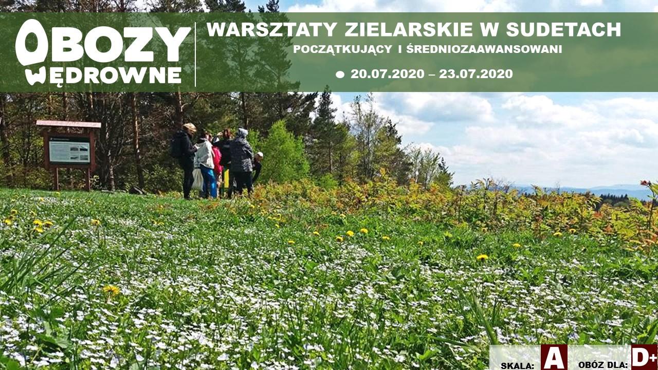 Warsztaty Zielarskie Sudety. (Początkujący i średniozaawansowani) – edycja 1/2020