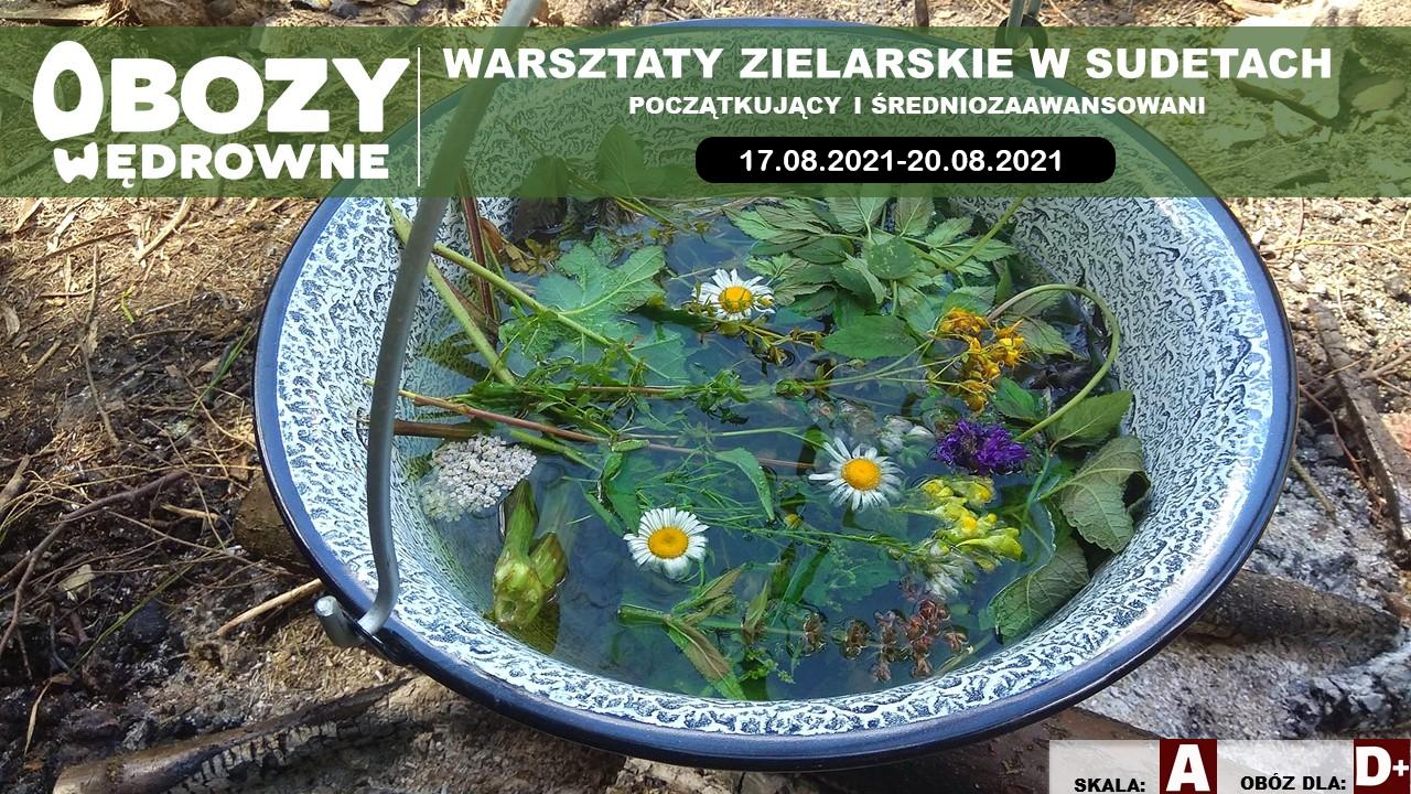 BRAK WOLNYCH MIEJSC Warsztaty Zielarskie Sudety. (Początkujący i średniozaawansowani) – edycja 2/2021